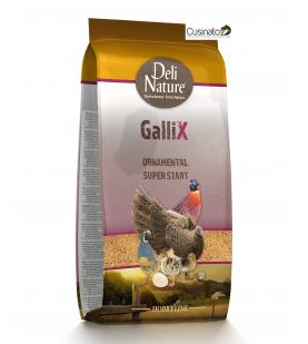 Deli Nature Gallix Ornamental super Start