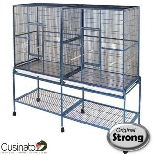 Original Strong - Birdcage Alana